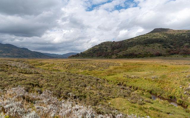 Landscape of the Bale National Park. Wet meadows.