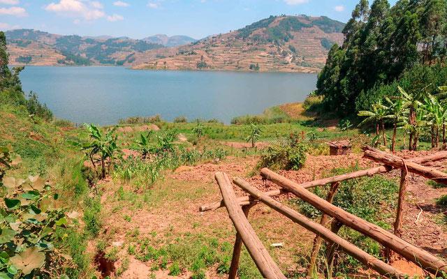Vue sur le lac de Bunyony