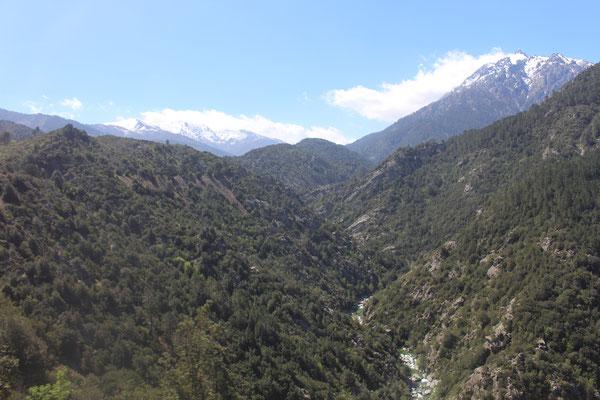 Ajaccio-Corte Schneebedeckte Berge im Hintergrund