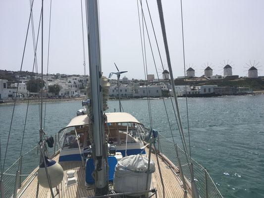 Alia in erster Reihe vor der Altstadt von Mykonos