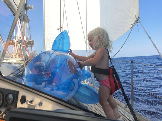 Unser neuer Passagier an Bord - Delfi