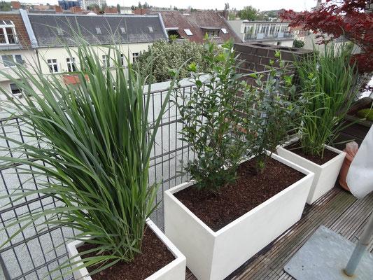 Gartenplanung gr nblick gartengestaltung gartenplanung berlin - Gartenberatung berlin ...