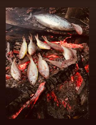 Mit Feuer Fisch grillen
