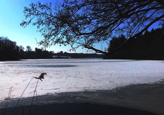 Der zugefrorene Obersee