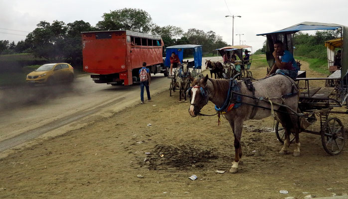 ...mit Anschluss an Pferdekarren