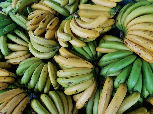 Bananen  in der Markthalle von Ponta Delgada