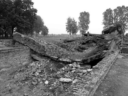 Ruinen von Gaskammer/Krematorium 3