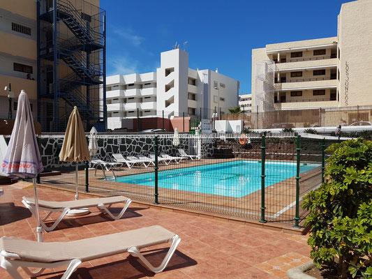 Apartamentos Strelitzias, Blick aus unserem Zimmer 105 auf den Swimmingpool