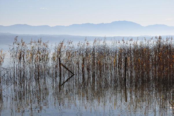 Starnberger See, 20.11.2011