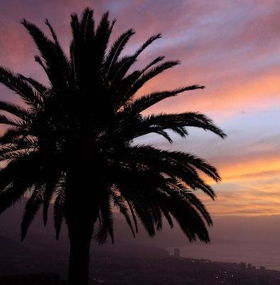 Sonnenuntergang über Puerto de la Cruz (Blick vom Haus Hallerbach)