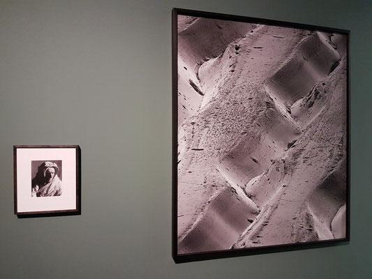 Ausstellungsraum im Witte de With Center for Contemporary Art.  Auf dem Foto ist Hans Helfritz dargestellt, dem als erster europäischer Entdeckungsreisender Anfang der 30er Jahre des 20. Jahrhunderts die Durchquerung Südwest-Arabiens gelang.