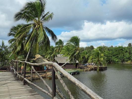 """Inselgruppe """"Guamá"""" inmitten der Laguna del Tesoro"""