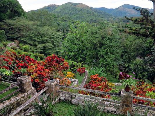 Im Orchideengarten von Soroa