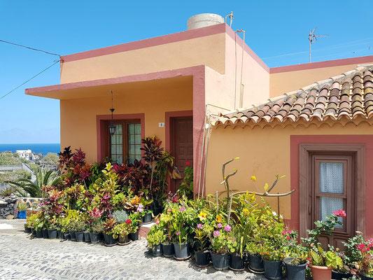 Wohnhaus eines Blumenliebhabers in San Andrés an der Calle Abajo