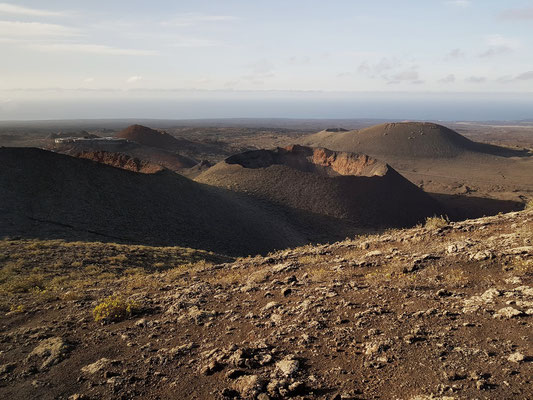 Rundfahrt per Bus durch den Nationalpark: Vulkankrater