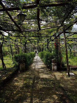 Ravello. Spaziergang zur Villa Cimbrone