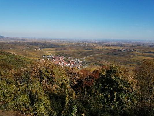 Blick von der Madenburg nach Nordosten: Eschbach inmitten der Weinfelder der Südlichen Weinstraße