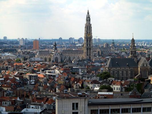Panoramasicht vom Dach des MAS auf die Altstadt mit der Liebfrauenkathedrale