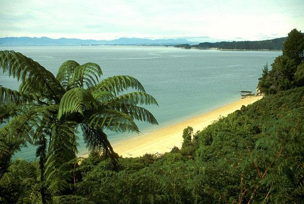 NZ Abel Tasman Track