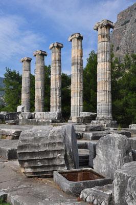 Wiederaufgerichtete Säulen des ehemaligen Athena-Tempels