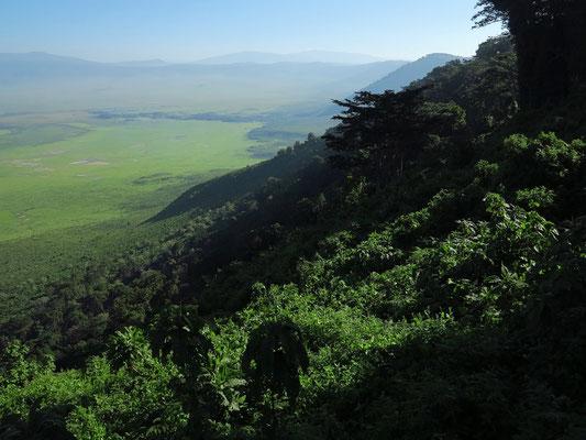Blick vom Aussichtspunkt an der Straße B 144 in den Ngorongoro-Krater