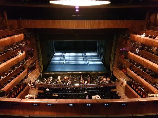 Der Große Saal mit 1358 Sitzplätzen