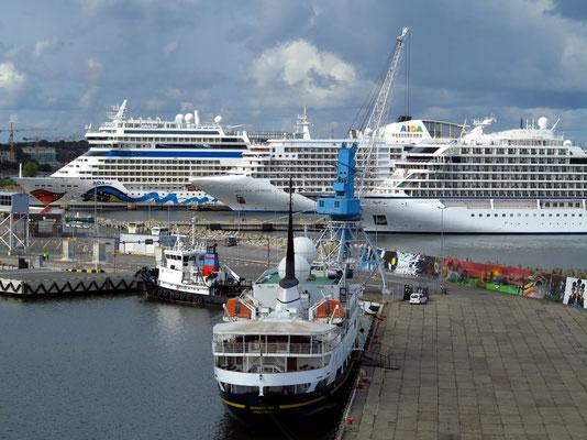 Einfahrt in den Hafen von Tallinn, große Kreuzfahrtschiff im Hafen