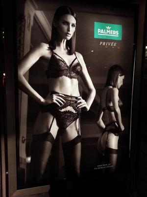 Palmers, ein Kultlabel aus Österreich. Werbung an einer Tram-Haltestelle gegenüber der Wiener Staatsoper
