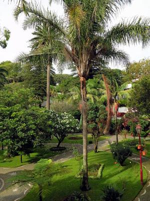 Park Jardim Duque de Terceira