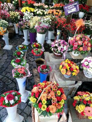 Blumenmarkt auf dem Plac Solny