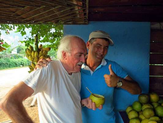 Genuss der Kokosmilch