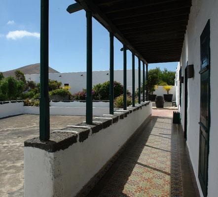 Weingut El Grifo östlich von Masdache