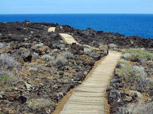 Holzplanken-Weg durch das Lavafeld