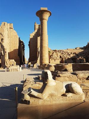 Vom ersten Hof mit der einzigen noch aufrecht stehenden 21 m hohen Säule blickt man längs der Tempelachse durch den Großen Säulensaal.