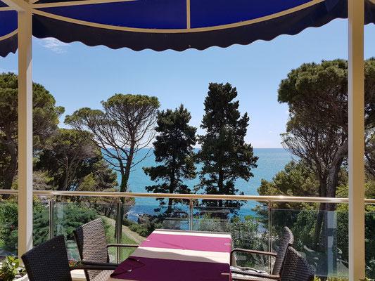 Im Hotel Albatros, wo wir auf der Terrasse unseren Lunch einnahmen und sehr zufrieden waren. (Die Qualität der Gästezimmer wird meist schlecht bewertet.)