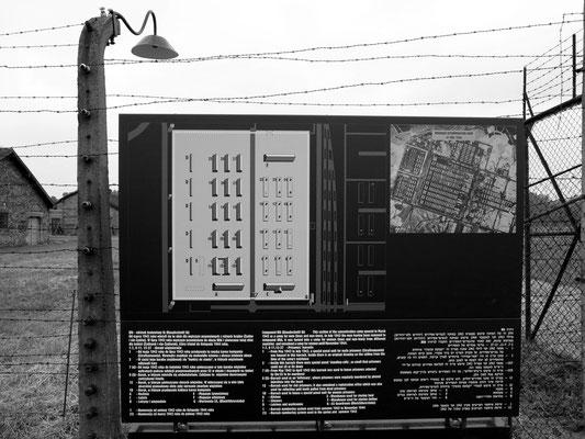 Plan des Lagerblocks BIIa (Quarantänelager)