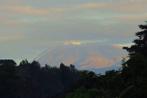 Kilimanjaro am 08.02.2016, 06:45