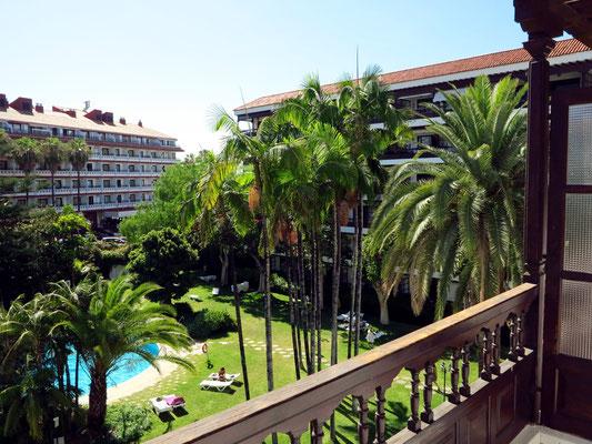 Palmen im Garten unseres Apartmenthauses