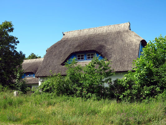 Reetgedecktes Haus in Kloster