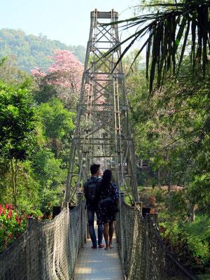 Hängebrücke über den Mahaweli Ganga