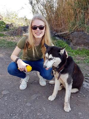Begegnung mit einem Husky bei der Casa Antonio