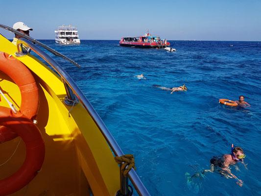 Schnorcheln an den Korallenbänken