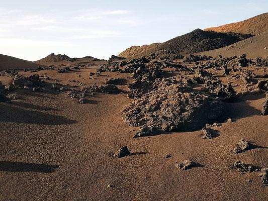 Rundfahrt per Bus durch den Nationalpark: Lava über Aschefeldern
