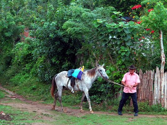 Farmer mit Pferd
