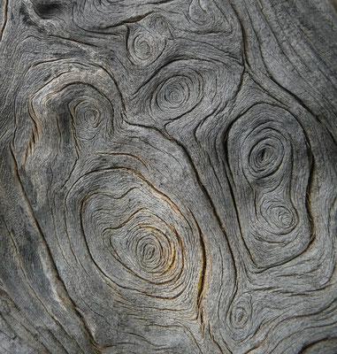 Holz des Zedernwacholders