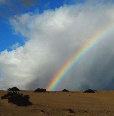 Parque Natural de Corralejo