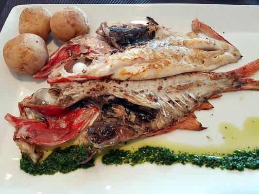 Fischessen im neuen Restaurant der Saline (Wolfsbarsch, spanisch: lubina)