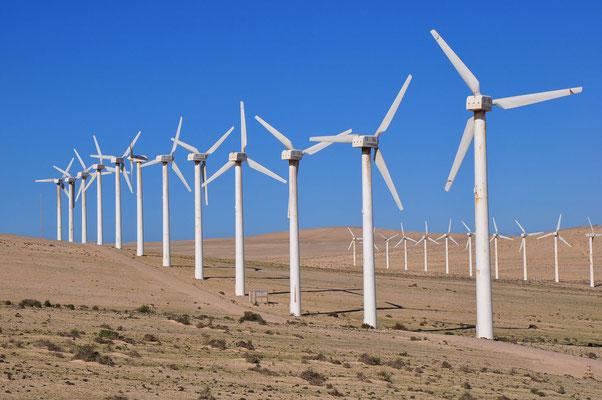 Großwindanlagen auf den Sandfeldern von La Pared