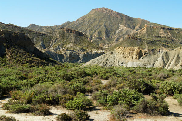 Wüste Taberna