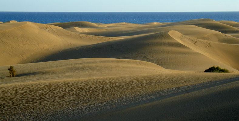 Dünenlandschaft von Maspalomas